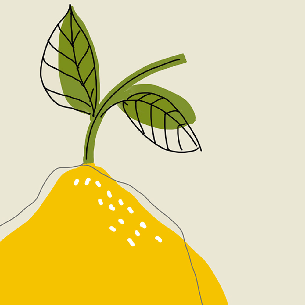 Lemon illustration detail