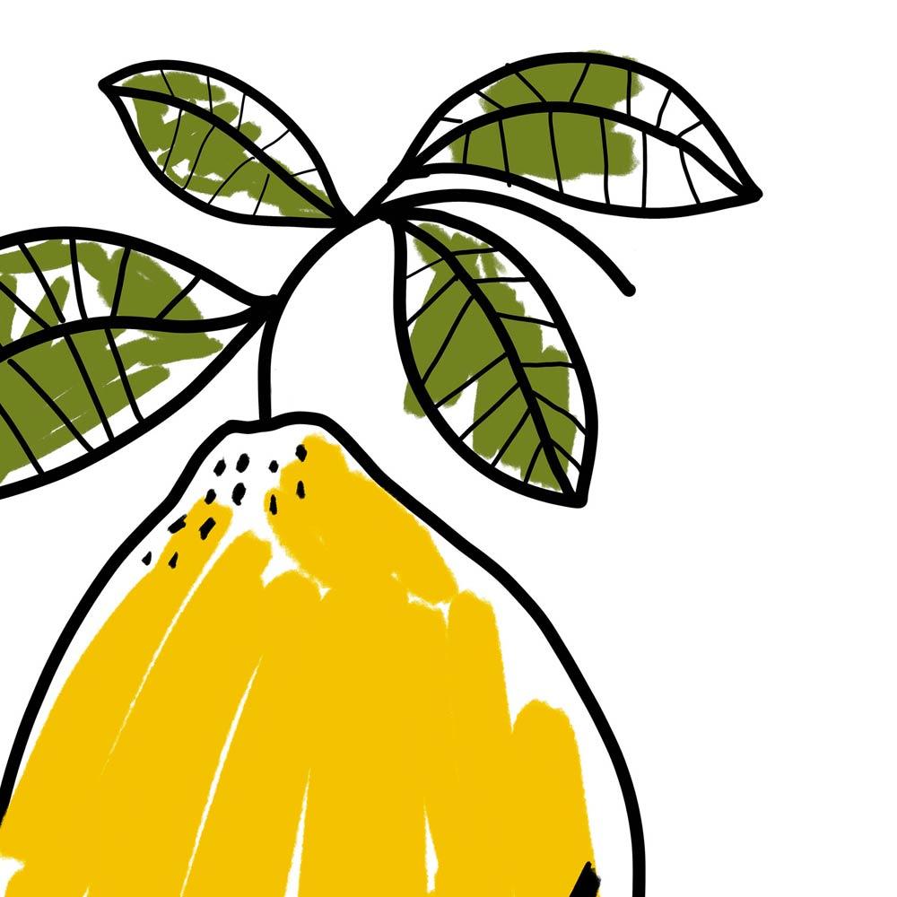 One Lemon kitchen wall art detail