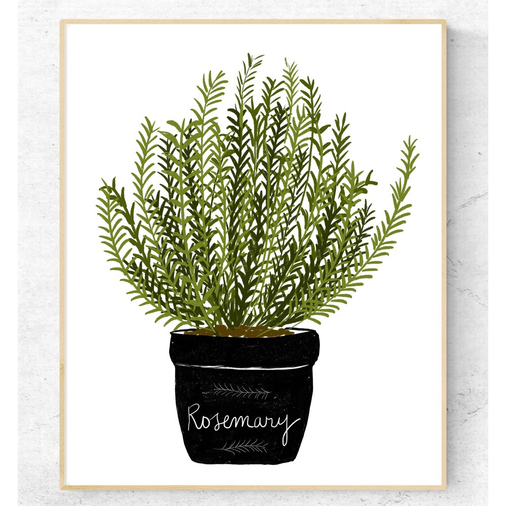 Aromatic herb kitchen art wall